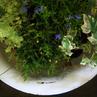 ホウロウの洗面器